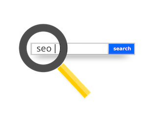 SEO search Result